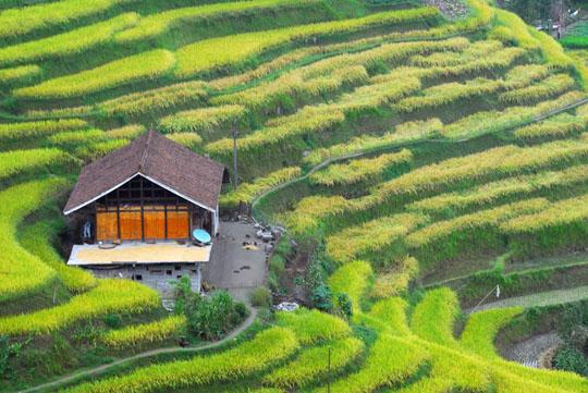 紫鹊界梯田,娄底新化县旅游风景区